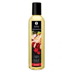 Aceite de masaje Organica Shunga DELICIA DE ARCE (Maple Delight)
